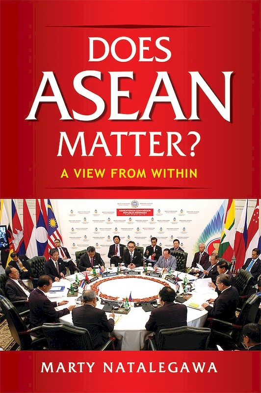 Does ASEAN Matter? A View from Within book cover