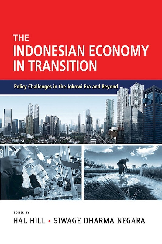 The Indonesian Economy in Transition: Policy Challenges in the Jokowi Era and Beyond book cover